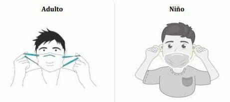 colocar la mascarilla cogiendo las gomas